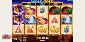 wolf-gold-14